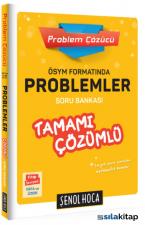 Problem Çözücü